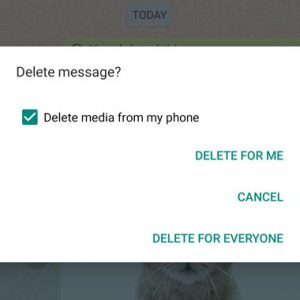 WhatsApp 'Delete for Everyone' Doesn't Delete Media Files Sent to iPhone Users