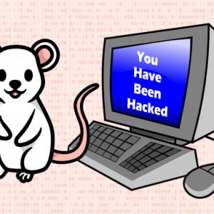 LuckyMouse Hackers Target Banks, Companies and Governments in 2020