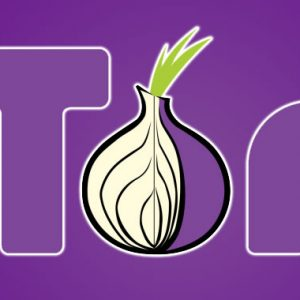 Patch Tor Browser Bug to Prevent Tracking of Your Online Activities